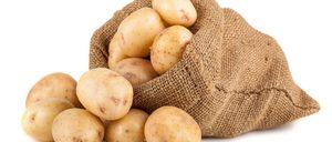 Informe 2019 sobre el sector de patata