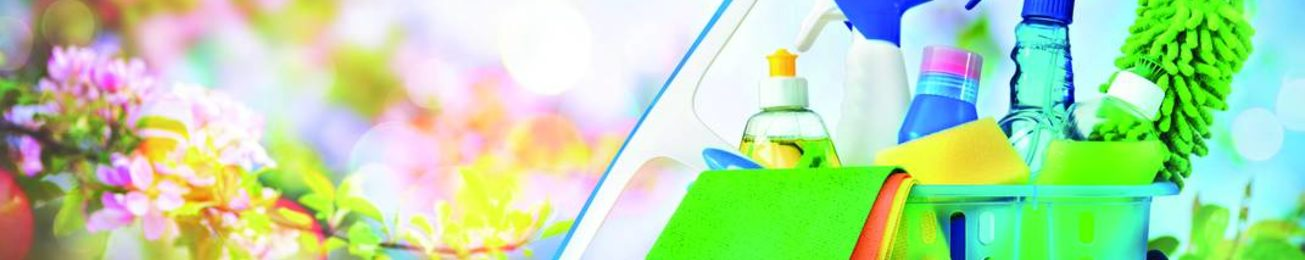 Informe 2019 sobre el sector de Limpiadores en España