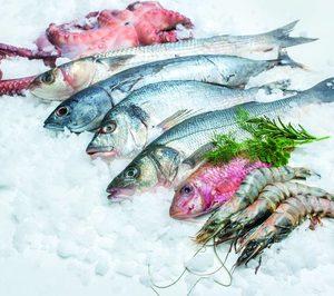 Pescado y Marisco congelado: todas las miradas puestas en un sector en plena expansión