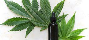 La nueva revolución del cannabis en belleza