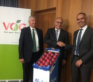VOG: proyecto estratégico varietal y nuevo director al frente del consorcio