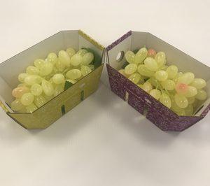 Smurfit Kappa desarrolla una solución de cartón ondulado para uvas