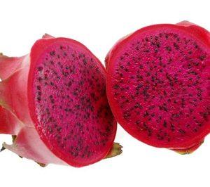 Tropical Millenium trabaja para introducir la pitaya en la gran distribución