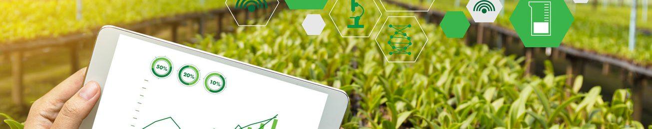 Las previsiones de crecimiento acentúan la innovación en el sector hortofrutícola