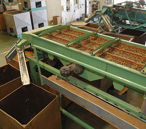 Almendras Martí invierte para aumentar su producción