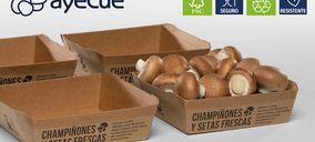 Ayecue apuesta por bandejas de cartón 100% sostenibles