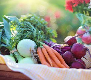 Solo el 1% del gasto en la frutería de la distribucióncorresponde a producto ecológico