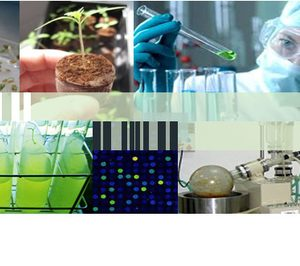 Kerry compra Pevesa para potenciar productos de origen vegetal