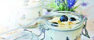 Informe 2019 sobre el sector de yogures y postres lácteos