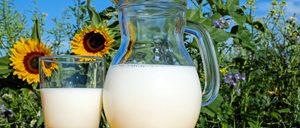 Informe 2019 sobre el sector de leche de consumo