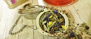 Informe 2019 del sector de tés e infusiones en España