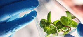 Asia y África, los mercados que más crecen en el negocio de Sensient Fragrances