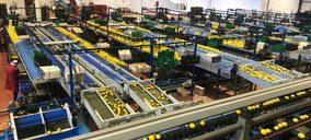 Agrios El Carril incorpora dos nuevas líneas para el procesado de fruta