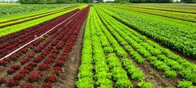 España exporta un 10% de frutas y hortalizas en 2019