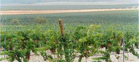 ¿Qué grupos vinícolas inaugurarán nuevas bodegas?