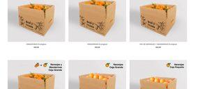 Una tienda online de frutas y hortalizas ecológicas inicia la exportación a Europa