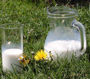 La MDD reduce su cuota en leche de consumo