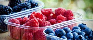 Informe 2020 sobre el mercado de Frutos Rojos