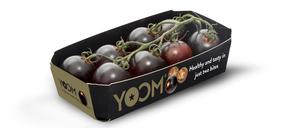 El tomate Yoom de Syngenta conquista Alemania