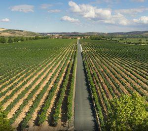 Resultados positivos para las cotizadas Barón de Ley y Bodegas Riojanas