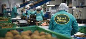 Kiwi Atlántico estabiliza ventas e incrementa la capacidad en sus instalaciones