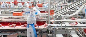 Informe 2020 del sector de carne de porcino