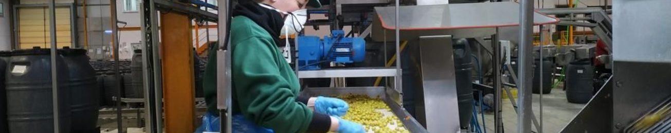 Los  fabricantes  de alimentación dan respuesta a los picos de la demanda