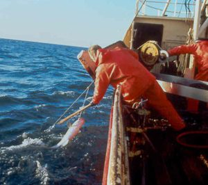 El sector pesquero agudiza su caída por el Covid-19