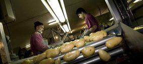 Grupo GV El Zamorano afronta la creciente demanda de patatas desde su nuevo centro