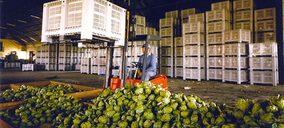 Contenur mantiene sus ingresos mejorando la exportación