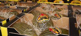 Agroponiente incrementa su producción de melón y sandía
