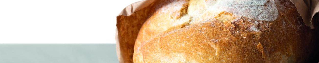 Informe 2020 sobre Distribución de Panadería