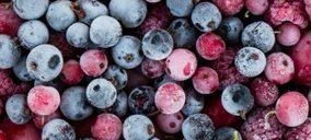 La especialista en fruta congelada La Cuerva traslada la producción a su nueva planta