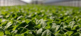 La consultora CBRE presenta su nueva línea de negocio Agribusiness en Europa