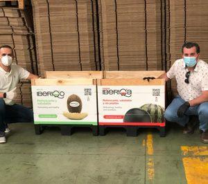 Grupo Iberiqos presenta su nuevo packaging sostenible de melón y sandía para retail