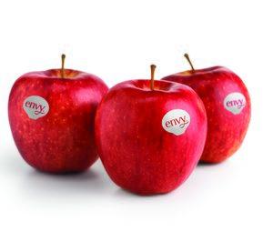 Las ventas de manzana Envy crecen un 30%