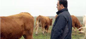 Carrefour refuerza su alianza con El Encinar de Humienta para potenciar la venta de añojo