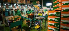 Kiwi Atlántico aumenta a más de 3 M€ la inversión en sus instalaciones