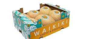 Jimbofresh presenta Waikiki, su nuevo melón de tamaño reducido