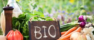 Informe 2020 sobre Alimentación Ecológica