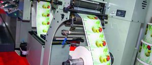 Informe 2020 del sector de Etiquetas Industriales