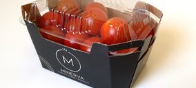 Looije lanza la marca 'Minerva' de tomate cherry para el segmento prémium