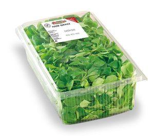 Vegetales Línea Verde, máxima colaboración para la vuelta a la normalidad en horeca y gran consumo