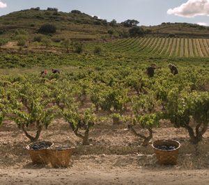 Medidas reales y medibles reafirman el compromiso de Bodegas Riojanas con la sostenibilidad
