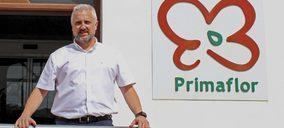 Eduardo Córdoba, nuevo Director General de Operaciones de Primaflor