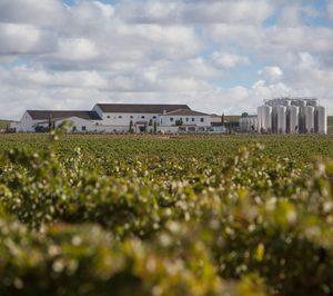 J. Fernando Family Wines invierte más de 9 M en una bodega en Rueda