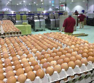 Avícola Velasco anuncia la mayor inversión de su historia