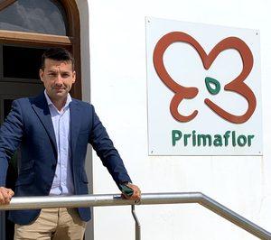 Primaflor apuesta por la profesionalización y refuerza la dirección TIC y financiera