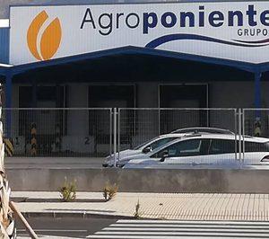 La hortofrutícola Agroponiente potencia la logística en su nuevo centro de manipulado