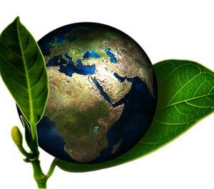 ¿Cuáles están siendo las propuestas más sostenibles del año?